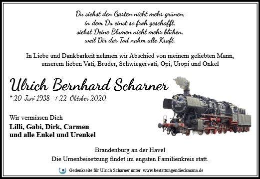 Profilbild von Ulrich Scharner